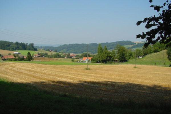 http://knonauer-amt.ch/wp-content/uploads/2016/06/Sommerlandsch-1Aug03-600x400.jpg