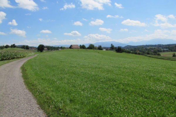 http://knonauer-amt.ch/wp-content/uploads/2016/06/obfelden_alpenblick-600x400.jpg
