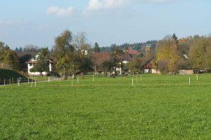 https://knonauer-amt.ch/wp-content/uploads/2016/09/Maschwanden-Ausserdorf-300x200.jpg